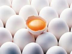 Яйцо куриное от Жас Канат