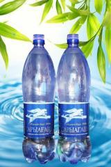 SARYAGASh mineral water