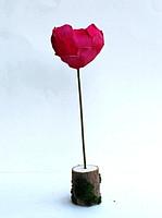 """Композиция """"Сердце"""" из лепестков розы и"""
