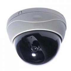 Analog D102 Dome Camera