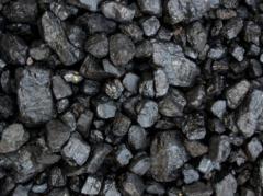 Coal Shubarkulsky