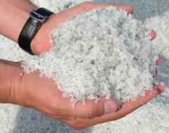 Salt Fodder