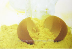 Egg powder in Almaty, Kazakhstan