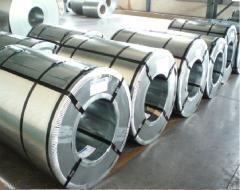 Zinc galvanized steel in rolls of St 08 kp/ps,