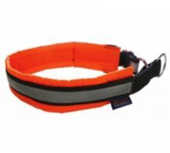 Collar for Blizard huskies
