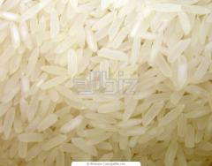 Rice wholesale. Export from Kazakhstan