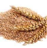 Bran wheat! fluffy!