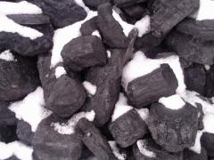 Bituminous coal for burning