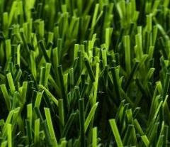 High-quality Artificial grass with all accessories