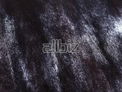 Natural fur of a mink