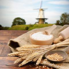 Flour for expor