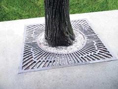 Lattice drain under trees
