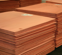 Copper the cathode M00K