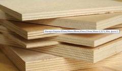 Plywood Birch