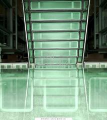 Glass ladders