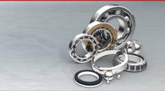 Radially - persistent conic roller bearings
