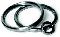 Metal sealing ring of Novus
