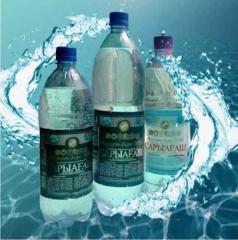 Минеральная вода Сарыагаш Барс