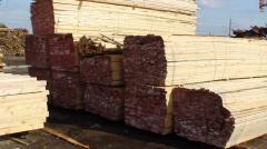 Timber in Kazakhstan