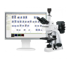 Digital system for the chromosomal analysis (a