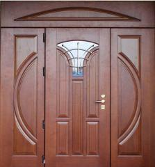 Doors entrance any design