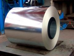 Galvanized sheet in a roll