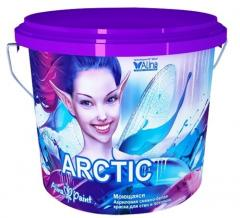 Paint the acrylic Alina Paint Arctic (washing) 1