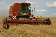 COMBINE HARVESTER OF LIDA-1300
