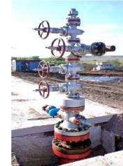 Armature heat-resistant steam ATPK-65-16-350