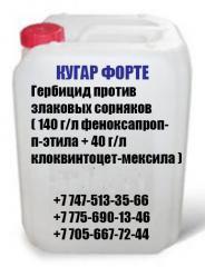 КУГАР ФОРТЕ