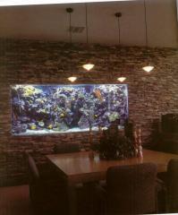 Aquarium to order