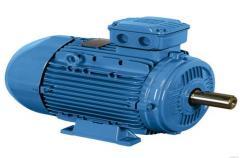 AIMU series electric motors,  execution of...