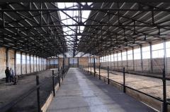 Frameworks of livestock complexes