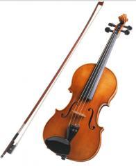 Violins in Almaty