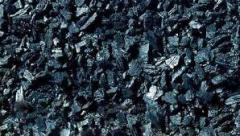 Уголь древесный буковый