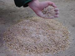 Compound feed for domestic animals