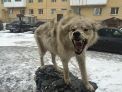 Effigy of a wolf