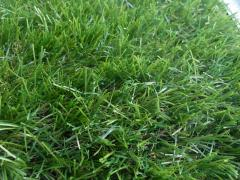 Artificial lawn of 50 mm