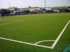 Sports artificial lawn