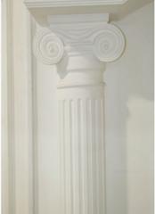 Semi-column (Ionic warrant)