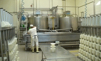 Переработка молока мини-молзавод