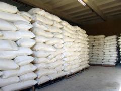 Sugar wholesale today!