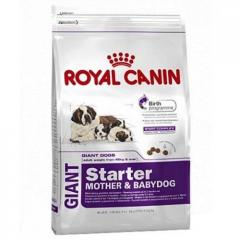 Giant Starter M&B Royal Canin корм для щенков