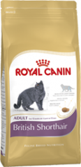 British Shorthair Adult Royal Canin корм для