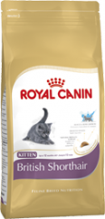 British Shorthair Kitten Royal Canin корм для
