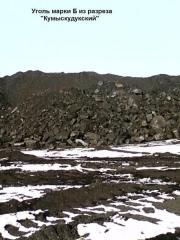 """Coal of brand G of """"Zhalyn"""