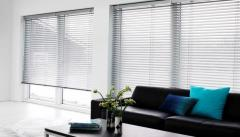 Blinds with the electric drive
