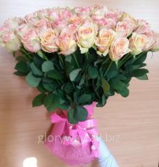 101 roses of a grade Fiesta