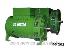Electric generators of the EG 202.1 series