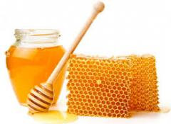 Honey wholesale from the producer at Low prices